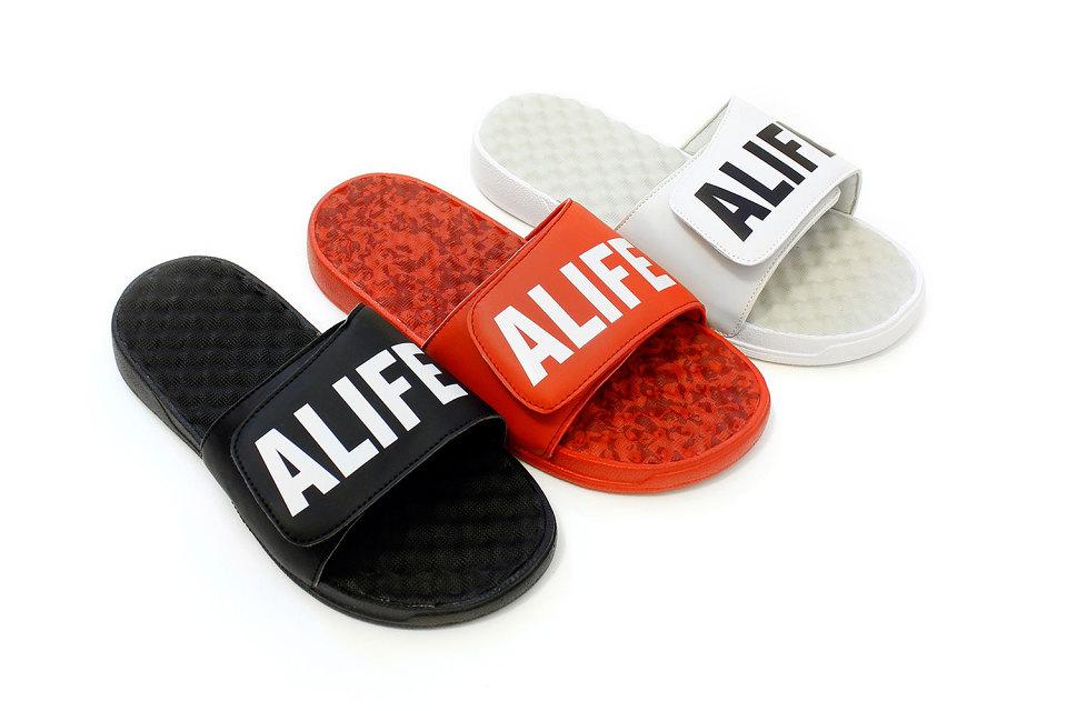 alife-slides-1-960x640