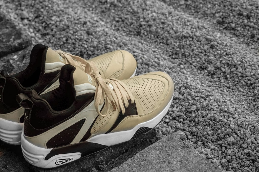 monkey-time-puma-blaze-of-glory-secular-change-04