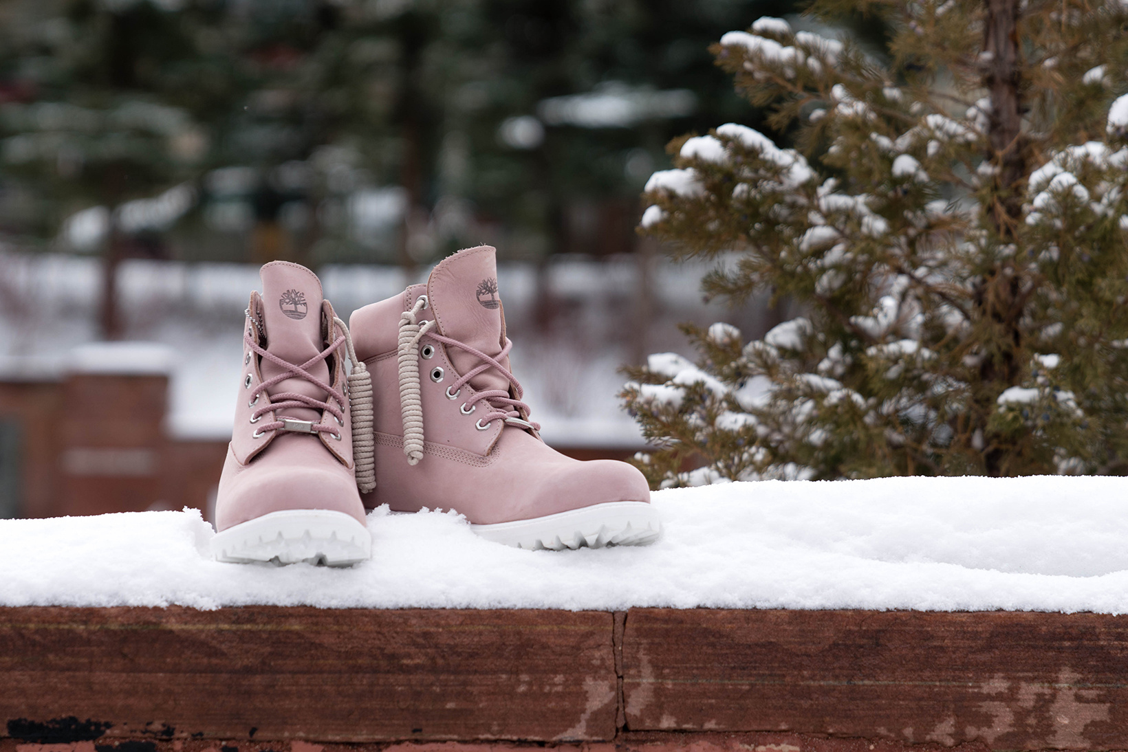 ronnie-fieg-friends-and-family-premium-timberland-1